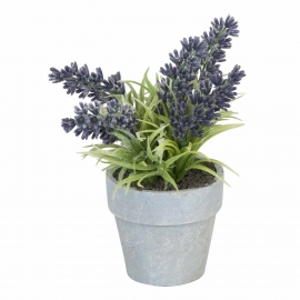 Flowerpot with lavender
